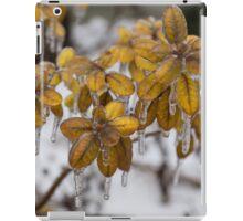 Ice Storm 2013 - Frozen Azalea Leaves  iPad Case/Skin