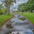 A Reflective Walk  by John  Kapusta