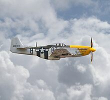 P51 Mustang Gallery - No5 by Pat Speirs