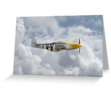 P51 Mustang Gallery - No5 Greeting Card