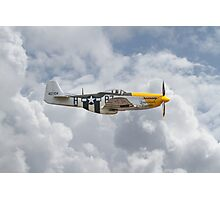P51 Mustang Gallery - No5 Photographic Print