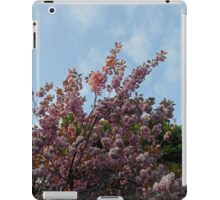 Pink Tree Blossoms against Blue Sky iPad Case/Skin