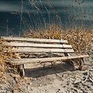 Beach Bench  by KSKphotography
