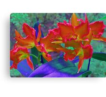 Orchid Alter Ego Canvas Print