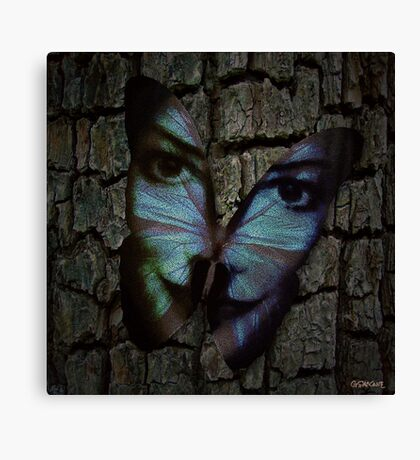 Am I A Butterfly Who Dreams About Being A Human? Canvas Print