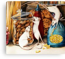 Thieves in the Cupboard! Canvas Print