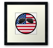 America ball Framed Print