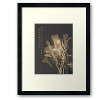 Gray Wilt Framed Print
