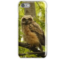 Among the maples iPhone Case/Skin