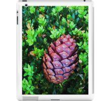 Cone for ipad iPad Case/Skin