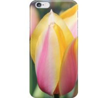 Springtime Tulips iPhone Case/Skin