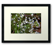 Wildflowers in the Wind Framed Print