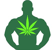 Hemp super hero by Style-O-Mat