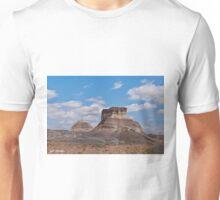 Arizona Desert and Mesa Unisex T-Shirt