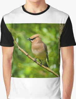 Cedar Waxwing Gathering Nesting Material Graphic T-Shirt