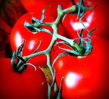 Tomatoes Throw Cushion by Fara