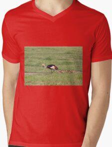 Grey Crowned Crane and Babies (Balearica regulorum) Mens V-Neck T-Shirt