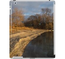 Early Light on the Beach iPad Case/Skin
