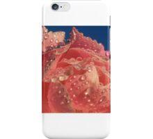 pink rose 2 iPhone Case/Skin