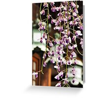 Lanterns and Wisteria Greeting Card
