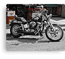 TIME FOR A RIDE Canvas Print