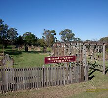Historic Hiland Crescent Cemetery, East Maitland Australia by SNPenfold