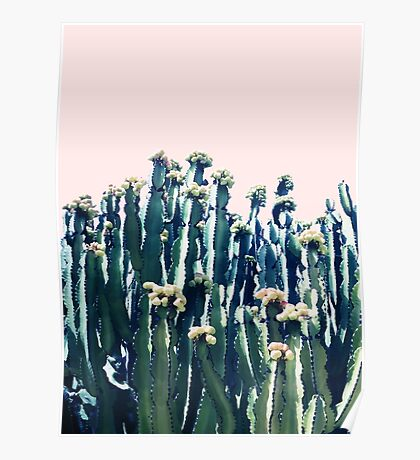 Cactus V5 #redbubble #lifestyle Poster