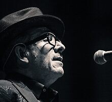 Elvis Costello #3 by Natalie Ord