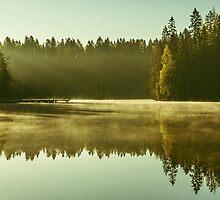 Gaia by Matti Ollikainen