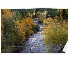 Styx River, Glenora, Tasmania Poster