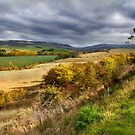 Rural Landscape - Derwent Valley, Tasmania by clickedbynic