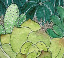 Succulent Bowl Sticker