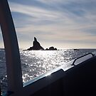 Sloop rock from the Ecotour boat by jayview