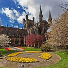 Chester Cathedral by George Standen