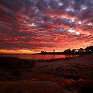 the next day, waubs bay. bicheno, tasmania by tim buckley   bodhiimages