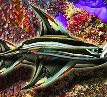 The Binder Fish by GolemAura