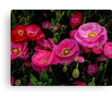 Pink is always better ~ Poppy ~ Canvas Print