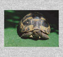 Eastern Hermann's Tortoise One Piece - Long Sleeve