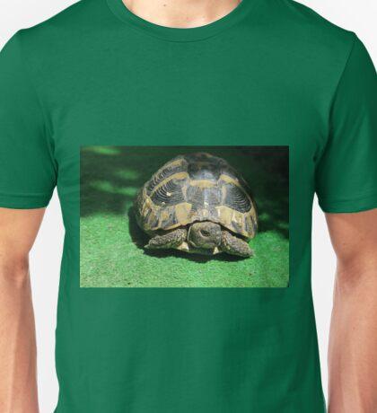 Eastern Hermann's Tortoise Unisex T-Shirt