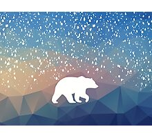 Beary Snowy in Blue Photographic Print