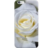 Single white rose iPhone Case/Skin