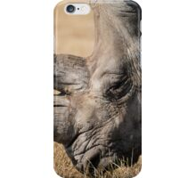 rhinoceros iPhone Case/Skin