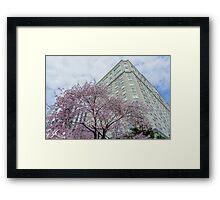 Spring decoration Framed Print