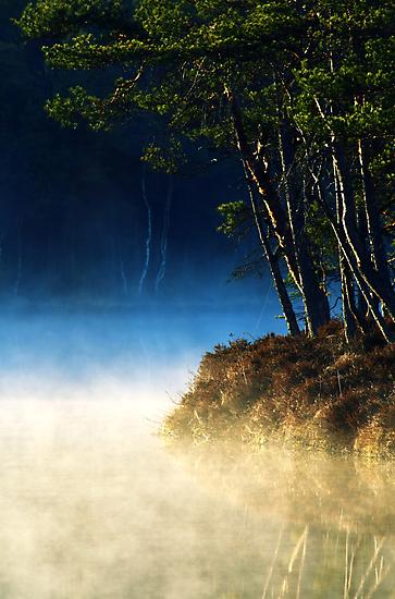 17.5.2014: Spring Morning by Petri Volanen