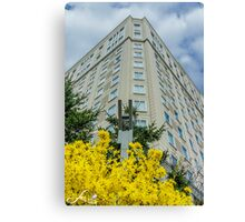 Beautiful day in Spring Canvas Print
