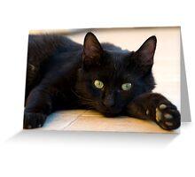 Blacky of Aqaba Greeting Card
