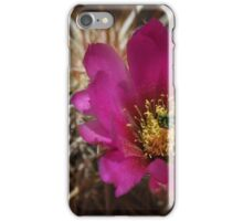 Original Hedgehog Cactus Bloom iPhone Case/Skin