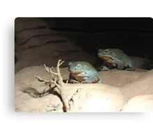 The 2 Frogs Canvas Print