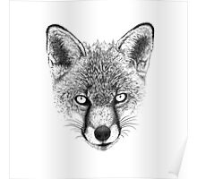 Fox Head Ink Drawing Poster