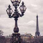 Paris, Je T'aime by emmycphoto